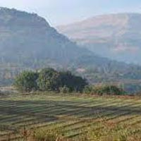 88 Acres Land for Agriculture