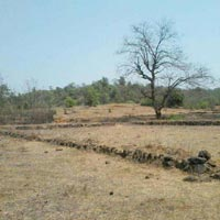 32 Acres Land for Agriculture