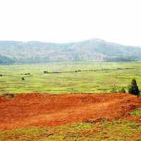 2000 acres Land for agriculture