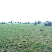 2500  acres Land for agriculture