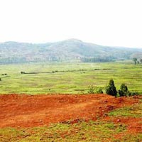 3200 Acres Land for Agriculture