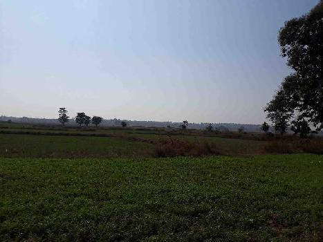 Agricultural/Farm Land for Sale in Jabera, Damoh