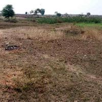 Agricultural Land for sale at Sagar, M P