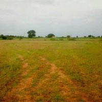 Agricultural/Farm Land for Sale in Rajgarh-Rajgarh
