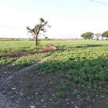 Agricultural Land for sale at Banwar
