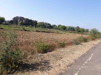 Agricultural Land For Sale In Badguan, Jabera, Damoh