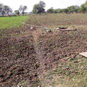 Agricultural Land For Sale In Hardua, Jabera, Damoh