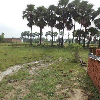 Residential Plot for Sale in Ramnagar-Varanasi, Varanasi
