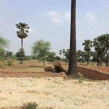 Residential Plot for Sale in Mughal Sarai