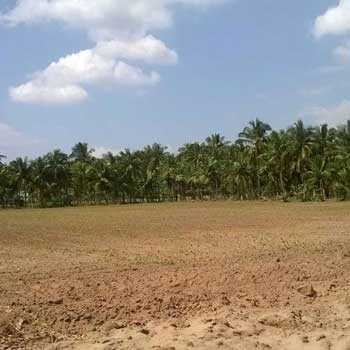 Residential Plot for Sale in Varanasi Road