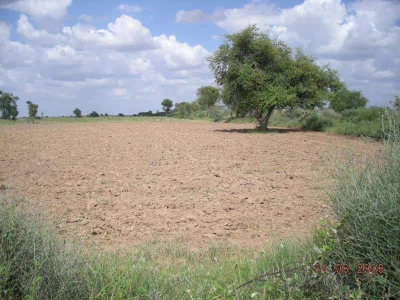 Commercial Lands & Plots for Sale in Alwar