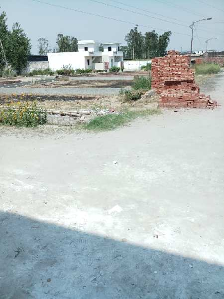 South-West Plot In Venus Velly Colony Jalandhar Harjitsons