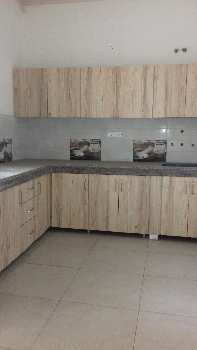 3bhk Individual House In Venus Velly Colony Jalandhar