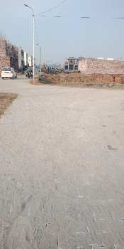Residential Plot for Sale in Amrit Vihar, Jalandar , Punjab