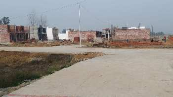 Great Investment 6.38 Marla Plot For Sale In Amrit Vihar Jalandhar