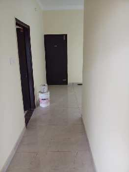 ( 8 Marla ) 4BHK Wonderful House For Sale In Jalandhar