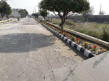 2 side Open 8.45 marla Plot for sale Amrit Vihar Extenstion jalandhar