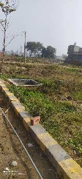 2 side Open 5.44 marla Plot in Amrit Vihar jalandhar