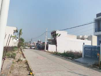 1500 Sq.ft. Residential Plot for Sale in Amrit Vihar, Jalandhar
