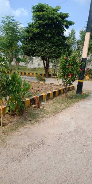 GOLDEN CHANCE 10. 14 Marla Plot IN Gated Colony In Jalandhar