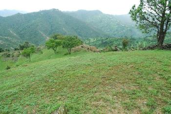 Residential Plot for Sale In Mukteshwar