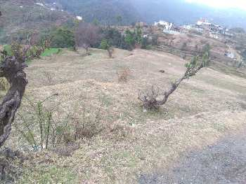 6 BHK Flats & Apartments for Sale in Mukteshwar, Nainital