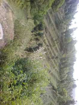 Agricultural/Farm Land for Sale in Ranikhet, Almora