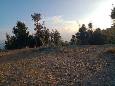 15600 Sq. Yards Agricultural/Farm Land for Sale in Mukteshwar, Nainital