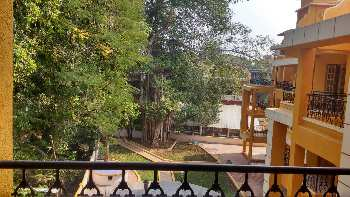 1 BHK Flats & Apartments for Sale in Candolim, Goa