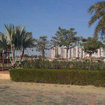 Residential Plot for Sale in Sector 14, Bahadurgarh