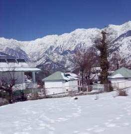 Commercial Lands /Inst. Land for Sale in Dharamsala