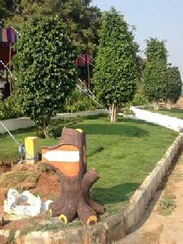 Residential Plot for Sale in M G Road, Delhi
