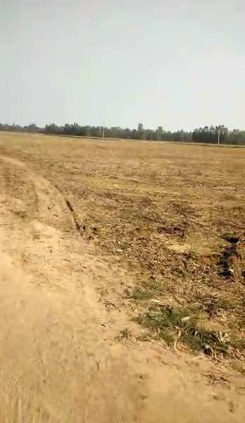 RESIDENTIAL PLOT IN DLF CHATTARPUR FARMS
