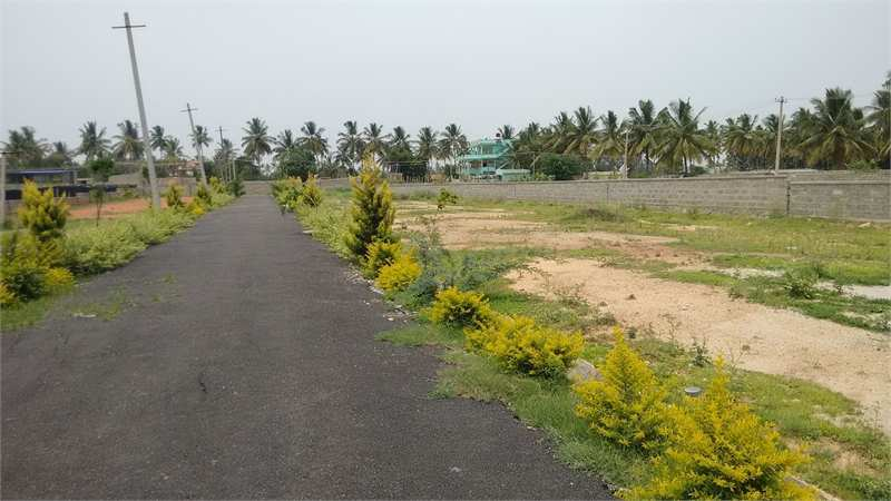 Residential Land for Sale in Thanisandra, Bangalore North