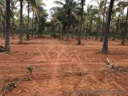 Agricultural/Farm Land for Sale in Srirangpatna, Bangalore South