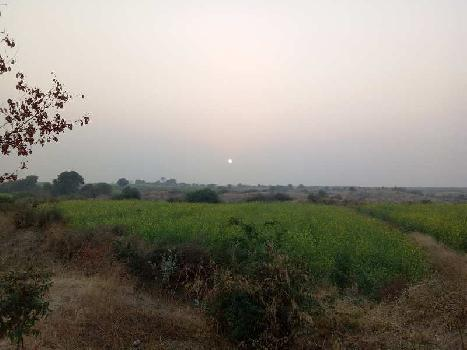 9 bhiga General Land for sell in Dahikhera village