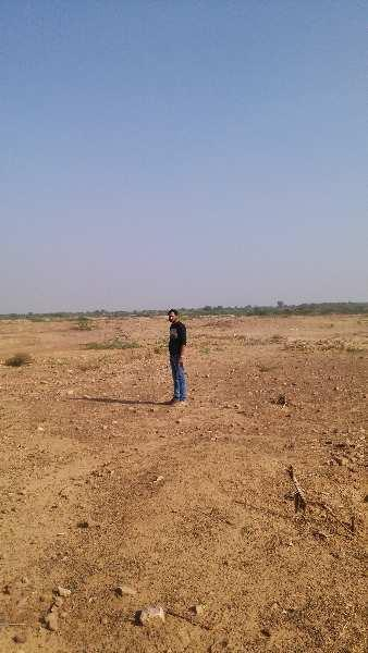 15 bigha land on highway