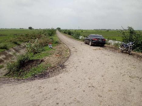 15 bigha agriculture land for sell