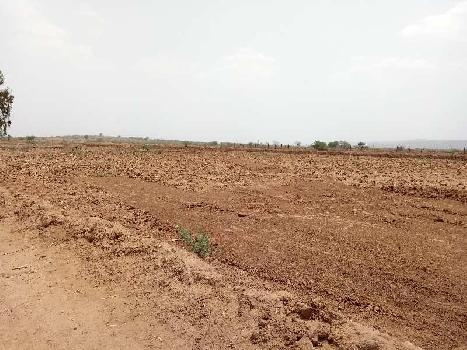 12bigha agriculture Land for sale in Piplda