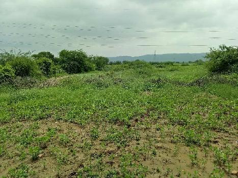 8 bigha genral land for sell in Kharayeta