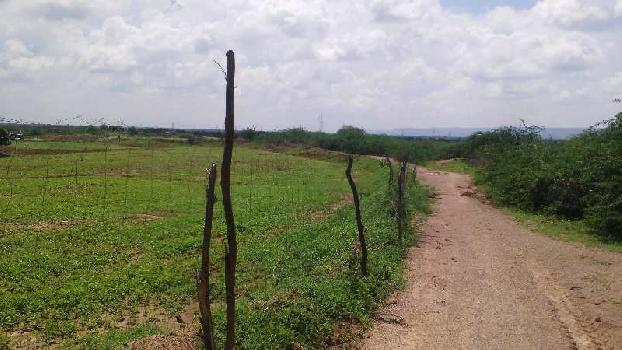 8 bigha farm land for sell in kesoraipatan bundi