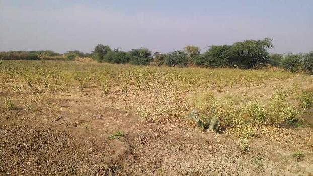 7 bigha farm land in notada village bundi