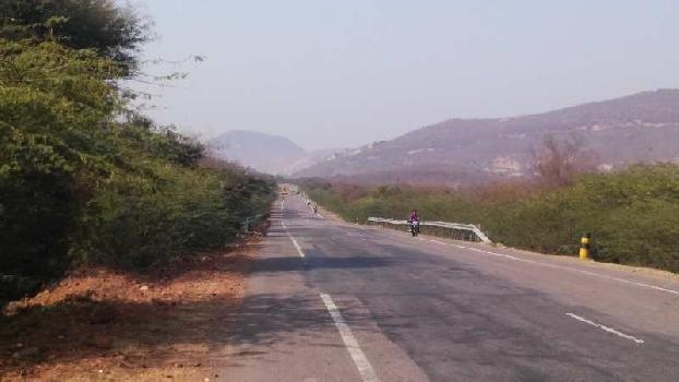 11 bigha farm land for sell in dahikheda village bundi