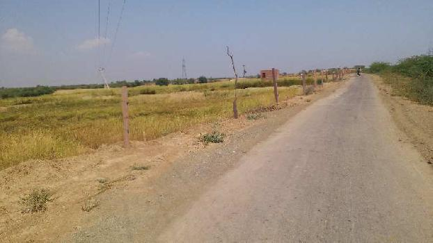 4 bigha farm land for sell in bhawanipura bundi