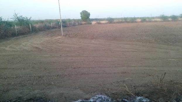12 bigha sc land for sell in jarkhoda village bundi