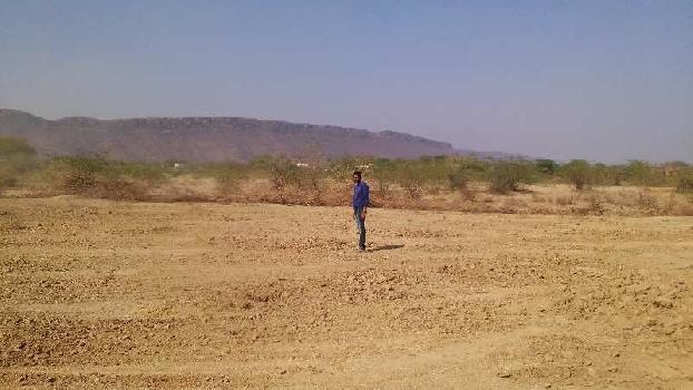 37 bigha farm land for sell in dei village bundi