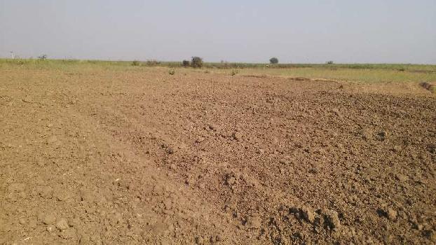 4 bigha farm land far sell in hastinapur village bundi