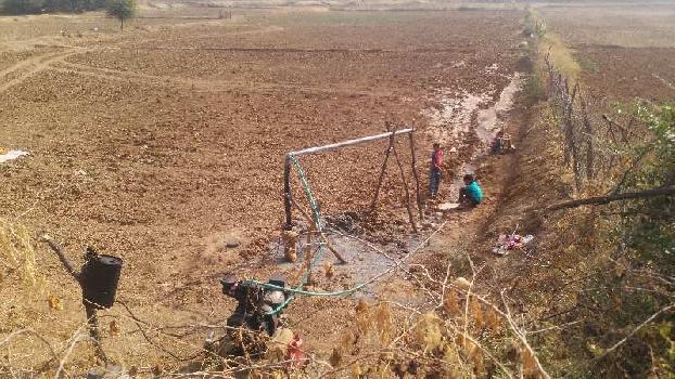 80 bigha farm land for sell in mandawara village kota