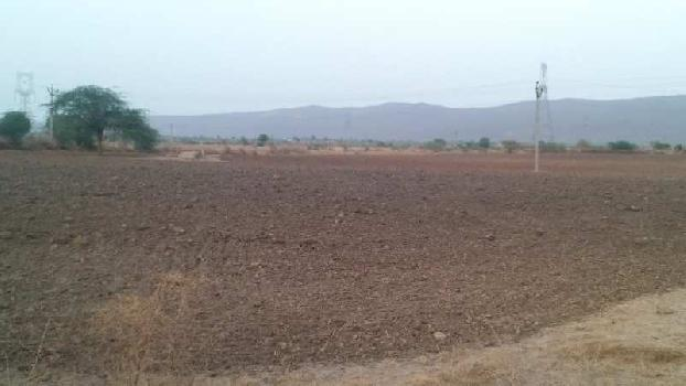 8 bigha farm land for sell in choru village tonk