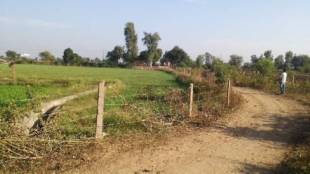 103 bigha farm land for sell in rohit village bundi